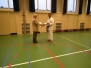 31-05-2013 Dan examens Ryukyu Kobujutsu Holland