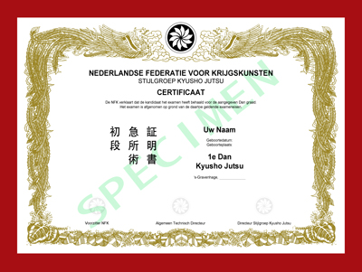 Certificaat Kyusho Jutsu