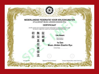 Certificaat M. J. Eisshin Ryu