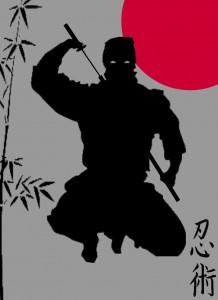 Ninjutsu-Ninja_1c