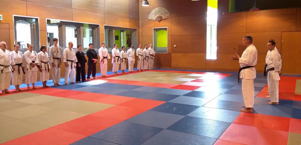 verslag the origin of karate 5 juni 2016 nederlandse federatie