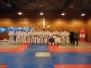 07-12-2013 Nederlandse Kampioenschappen Kobudo