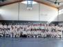15/17-06-2012 Seminar Inoue Hanshi