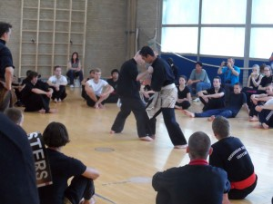 20140615_freefight_geleen_1