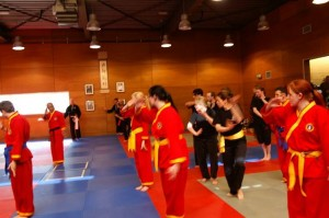 20150412_foto_6_International_Pencak_Silat_Seminar