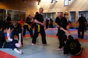 20150412_foto_8_International_Pencak_Silat_Seminar