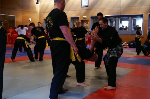 20150412_foto_9_International_Pencak_Silat_Seminar