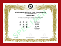 Certificaat Aikijutsu