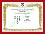 Certificaat Kempo