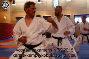 karate_01_MvS